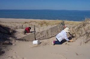How to Help | Friends of Sleeping Bear Dunes